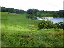 NY3404 : Short cut across a field near to Loughrigg Tarn by Peter S