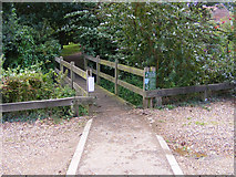 TG3204 : Pedestrian bridge from the car park at Rockland Staithe by Glen Denny