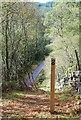 NR8391 : Footpath to Cairhbaan by Patrick Mackie