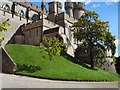 TQ0107 : Trees in front of Arundel Castle by Paul Gillett