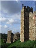 TM2863 : Castle Walls, Framlingham by Malc McDonald