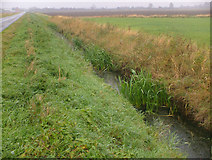 TA0623 : Marsh Lane Drain by David Wright