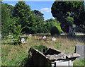 SU6895 : Pyrton Churchyard by Des Blenkinsopp