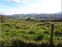 G8996 : Graffy Townland by Kenneth  Allen