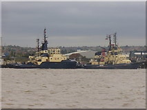 TQ6674 : Tugs at Gravesend by Colin Smith