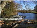 SN3140 : The river weir near the castle at Newcastle Emlyn by John Brightley