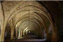 SE2768 : Cellarium, Fountains Abbey by Mark Anderson
