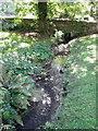 SM8306 : Stream beside St. Ishmael's church by nick macneill