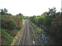 TQ2383 : Kensal Green: The North London Line by Nigel Cox