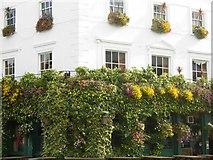 TQ3084 : The Hemingford Arms, Barnsbury by Stephen McKay