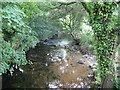 SX0670 : The River Camel from the Camel Trail by Derek Voller