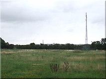 TQ4988 : Field and phone mast near Romford by Malc McDonald