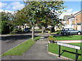 NZ4831 : Coatham Drive, Hartlepool by Alex McGregor