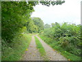 ST6890 : Restricted byway to Abbotside Farm by Jonathan Billinger