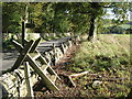 NY9562 : Stile on the footpath east of Sunnyside by Mike Quinn