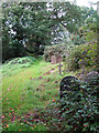TG2408 : Rosary cemetery, Norwich - path past gravestones by Evelyn Simak