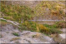 TG2142 : Cliffs, Cromer, Norfolk by Christine Matthews
