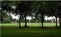 TQ2475 : Trees, Wandsworth Park by N Chadwick