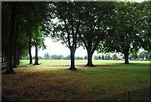 TQ2475 : Wandsworth Park by N Chadwick