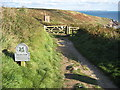 SW5927 : Coast path near Rinsey Cliff by Philip Halling