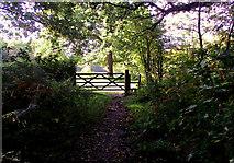 SJ8959 : Top entrance to the pasture by Jonathan Kington