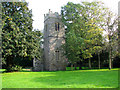TG2109 : The ruin of St Bartholomew Heigham, Norwich by Evelyn Simak