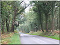 TQ4432 : Coleman's Hatch Road, Ashdown Forest by Malc McDonald