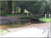 TQ4532 : Ford at Newbridge, Ashdown Forest by Malc McDonald