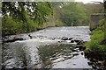 NZ2130 : Weir, River Gaunless by Mick Garratt