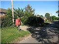 TF6923 : Church Lane, Roydon by Evelyn Simak