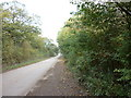 SE9625 : Looking North along Gibson Lane, Melton by Ian S