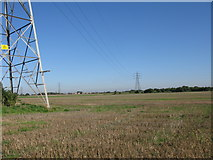 TR3156 : Pylons across the fields at Buckland Farm by Nick Smith