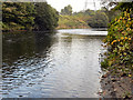 SD7803 : River Irwell, Clifton Country Park by David Dixon