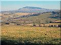 SO3717 : Farmland east of Caggle Street by Trevor Rickard