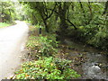 SW7624 : Stream flowing into Gillan Creek by Philip Halling