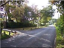 SD5013 : Autumn sunshine on Bentley Lane by Raymond Knapman