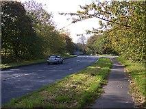 SD5110 : Double bends on the A5209 near Fairy Glen by Raymond Knapman