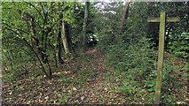 SJ8959 : Footpath to Grange Road by Jonathan Kington