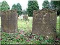 TG1439 : All Saints' church - churchyard by Evelyn Simak