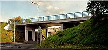 J4569 : Flyover, Comber by Albert Bridge