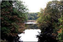 NX5956 : Gatehouse of Fleet:  Water of Fleet, looking downstream by Dr Neil Clifton