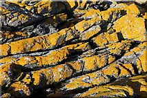 NG6151 : Lichen covered rocks by Calum McRoberts