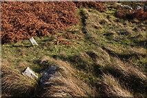NG6151 : Anchor points near Rubha Ard Ghlaisen by Calum McRoberts