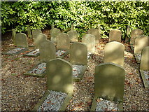 TQ1352 : Dog cemetery at Polesden Lacey by pam fray