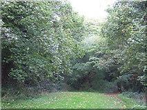 TQ3471 : Site of Upper Sydenham Station by Malc McDonald