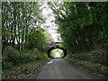 NY6228 : Rail bridge near Newbiggin by David Brown