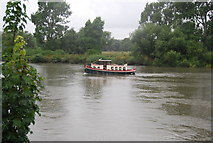 TQ1776 : Pleasure craft on the River Thames (Syon Reach) by N Chadwick