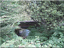 SP0683 : The Bourn Brook nears the River Rea by Robin Stott