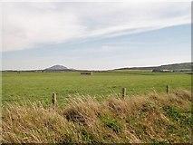 SH2035 : Barn in the field near Penrhyn Melyn by Eric Jones