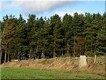 NZ0254 : Trig point on Barley Hill by Trevor Littlewood